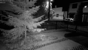 Night Camera Footage from Foscam FI9901EP Night Vision Camera