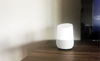 what works with google home?
