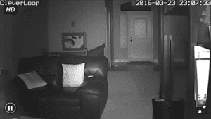 Real Night Time Footage from the CleverLoop Night Vision Indoor Camera