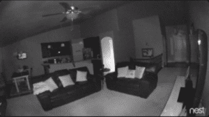 Real Night Camera Footage from the Nest Cam Outdoor Night Vision Camera